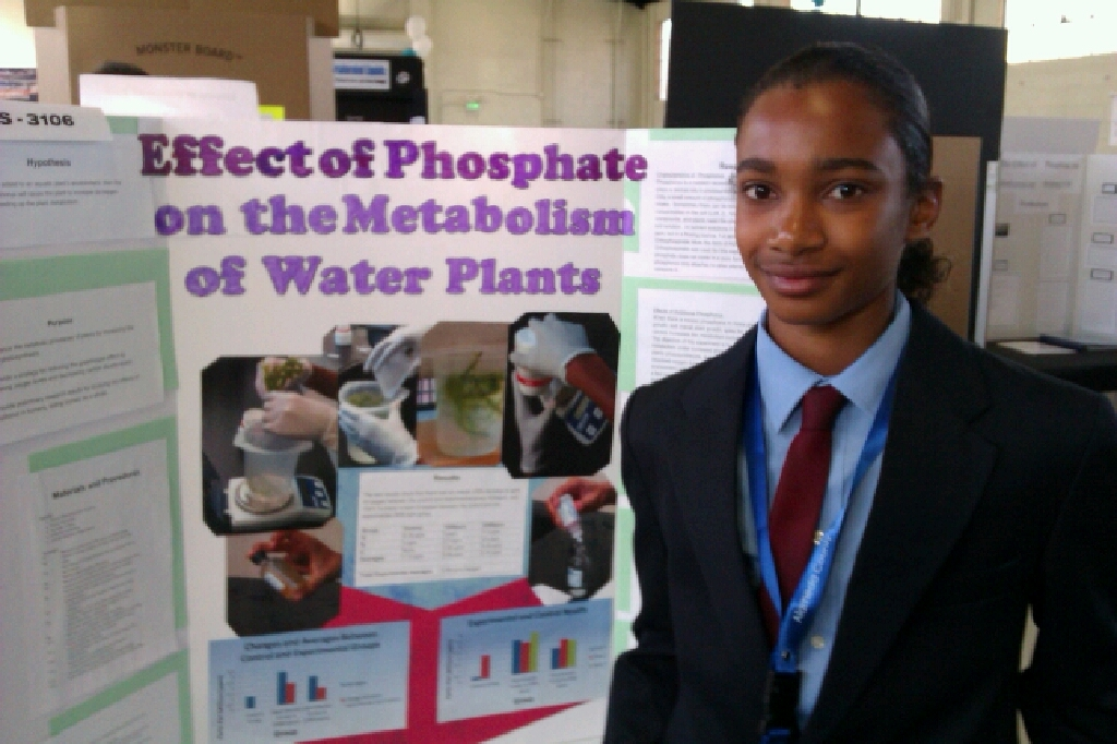 dublin schools win awards at the alameda county science and dublin high school alameda county science and engineering fair project