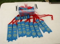 Dublin High School Special Olympics Soccer Competition Participation Ribbons