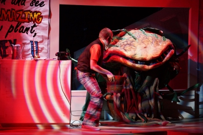 Little Shop of Horrors Pacific Coast Repertory Theatre Production - 33