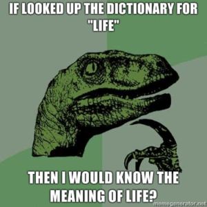 Meme - Then I would know the meaning of life