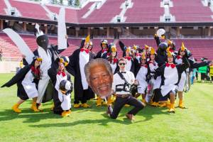 """""""March of the Penguins"""" Wacky Walk"""