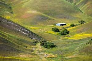 Doolan Canyon (credit Marc Davis)