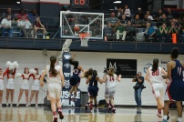 Dublin High School Lady Gaels Basketball 14
