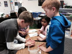 Dougherty Elementary School STEM