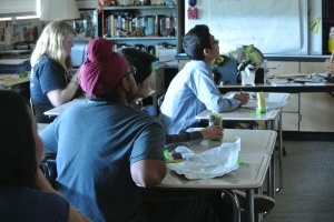 Dublin High School Freshman Mentor Program FMP 2 - Photo credit Dublin Shield