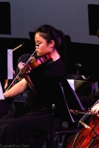 DHS_orchestra_viola