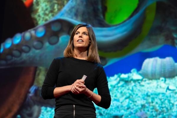 Gerboni TED 2018 2
