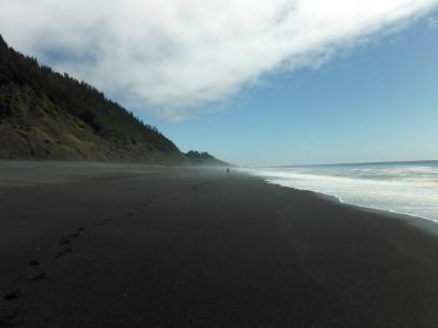 Lost coast2